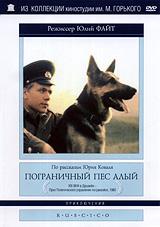 Виктор Косых (