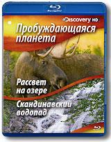 Восход - то природный будильник для гор, лесов, морей и миллионов созданий, живущих на Земле. Насладитесь безмятежными и одновременно захватывающими путешествиями по нашей планете во время восхода солнца, послушайте песни, которые поет нам просыпающаяся природа. Рассвет на озере Озеро Кидни. Мы находимся в тени горы Катадин (Аппалачи, США), которая возвышается над окружающим ее плоскогорьем на 4000 метров. Понаблюдайте за природой вокруг озера Кидни. Мать-лосиха пасется прямо в озере, а ее непоседливый детеныш стоит на берегу. Яркий луч света освещает вершину горы, утки неспешно плывут по озеру, а олененок с белым хвостом опасливо смотрит на воду, потому что папа-лось пересекает неподвижное и прозрачное озеро. Скандинавский водопад По мере приближения к леднику Лэнгьокул в Исландии начинает доноситься шум падающей воды. Восходит солнце и освещает один из самых больших водопадов в Европе, и мы видим прозрачную голубую воду тающего ледника-гиганта.