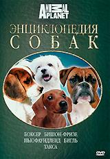 Энциклопедия собак: Боксер, бишон-фризе, ньюфаундленд, бигль, такса