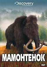 Смогут ли судебные криминалисты, исследуя тело недавно найденного крошки-мамонта, рассказать нам, что же на самом деле приключилось с его предками в конце ледяного периода? История мамонтенка и результаты современных научных исследований - в этой программе.