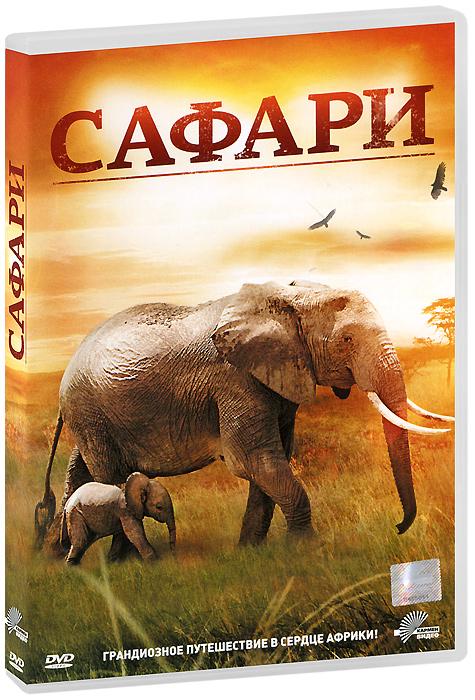 Вы никогда не были в Африке? Не видели настоящего слона или леопарда ? Теперь вы можете это сделать, не выходя из дома. Благодаря этому живописному фильму вы совершите незабываемое сафари по Южной Африке. Присоединяйтесь к биологу Льеслу, коренному обитателю Африки, который станет вашим гидом по сафари-парку. Вы встретитесь с африканской Большой пятеркой: львом, леопардом, слоном, носорогом и буйволом. Вы ощутите чудесную красоту этой земли в странствии по местам их естественного обитания.