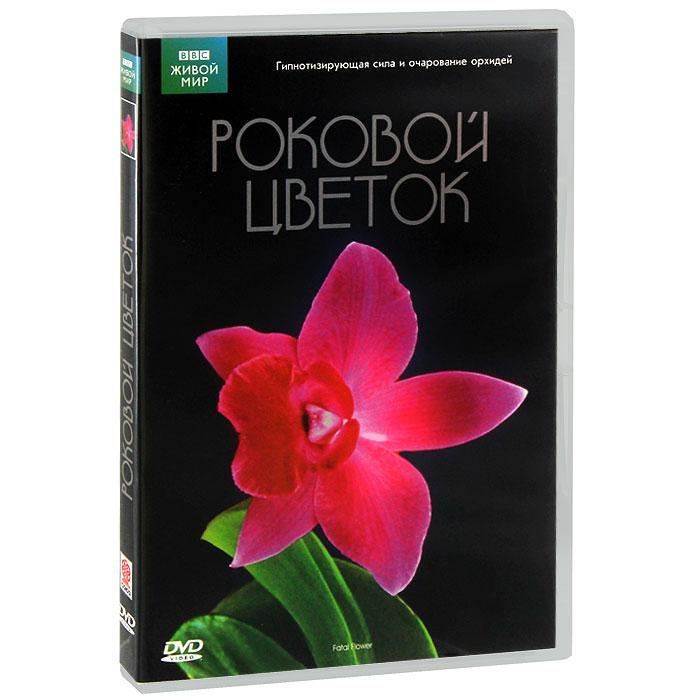ВВС: Роковой цветок