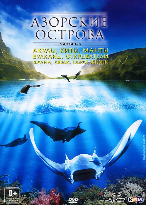 Фильм рассказывает об удивительной флоре и фауне уникальных Азорских островов и отправляет зрителя в путешествие по местам отдыха акул, китов, гигантских морских скатов и огромных стай всевозможных рыб. Архипелаг, состоящий из семи островов в середине Атлантического океана, на полпути между континентами Европы и Америки, завораживает уникальным пейзажем, сочетающим черноту застывшей лавы, синеву озер, заполнивших кратеры вулканов и буйство красок экзотических растений. Азоры - это настоящий рай для любителей дайвинга и последний нетронутый уголок Европы.