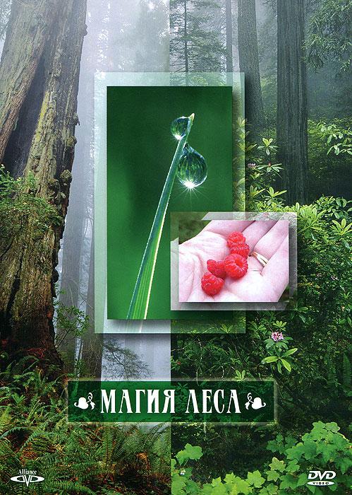 Магия леса