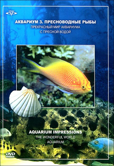 Прекрасный мир аквариума с пресной водой. В этом роскошном, красочном аквариуме Вы можете увидеть рыб из Южной Америки. Обычно они живут в озерах джунглей.