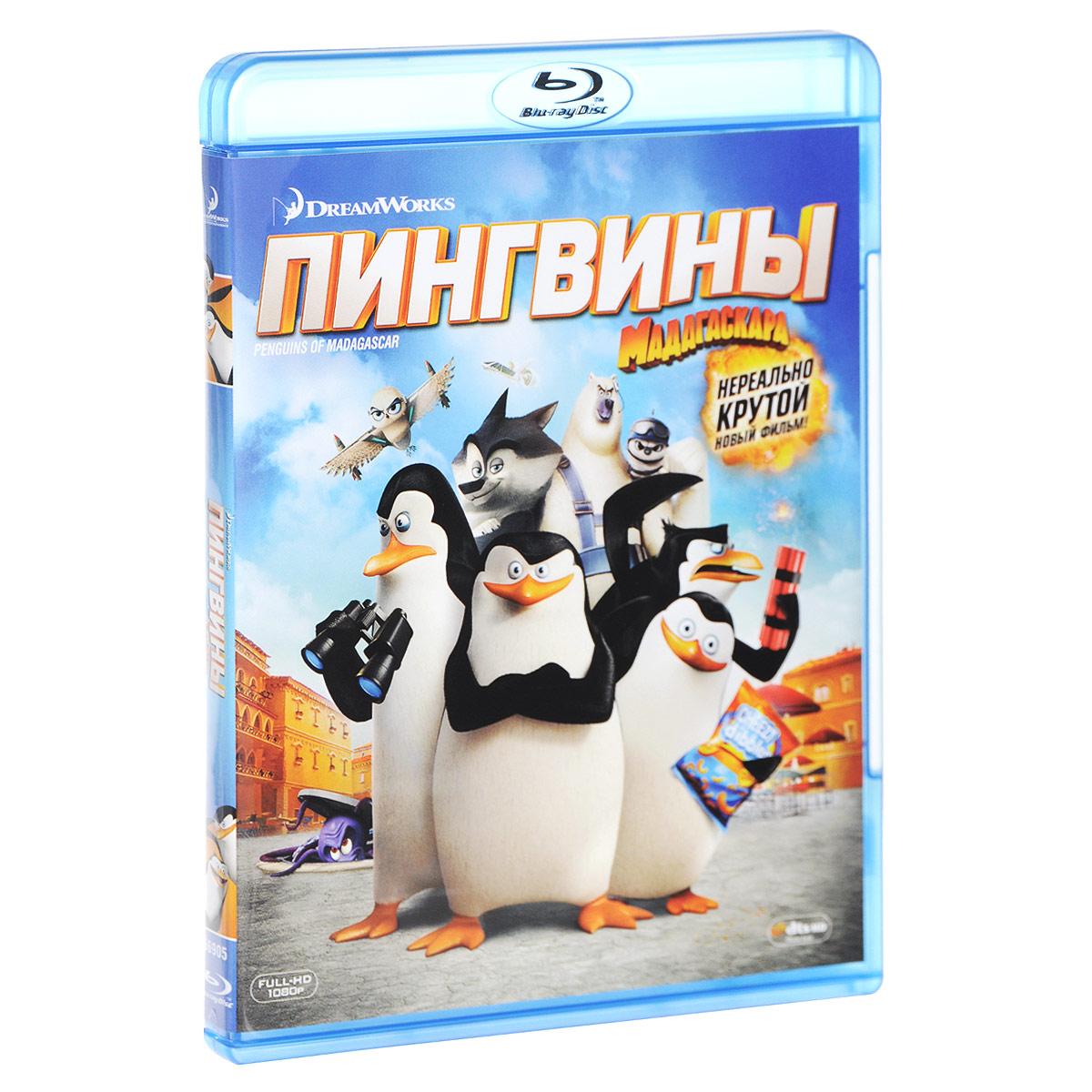 Пингвины Мадагаскара (Blu-ray)Они классные! Они милые! Они... возвращаются! Создатели Мадагаскара представляют новый комедийный мультфильм, доказывающий, что будущее шпионажа - за птичками! В Пингвинах Мадагаскара ваши любимые суперагенты - Шкипер, Ковальски, Рико и Прапор - объединяются с элитной командой Северный ветер, чтобы спасти мир. Невероятно смешные и захватывающие приключения героев никого не оставят равнодушным!