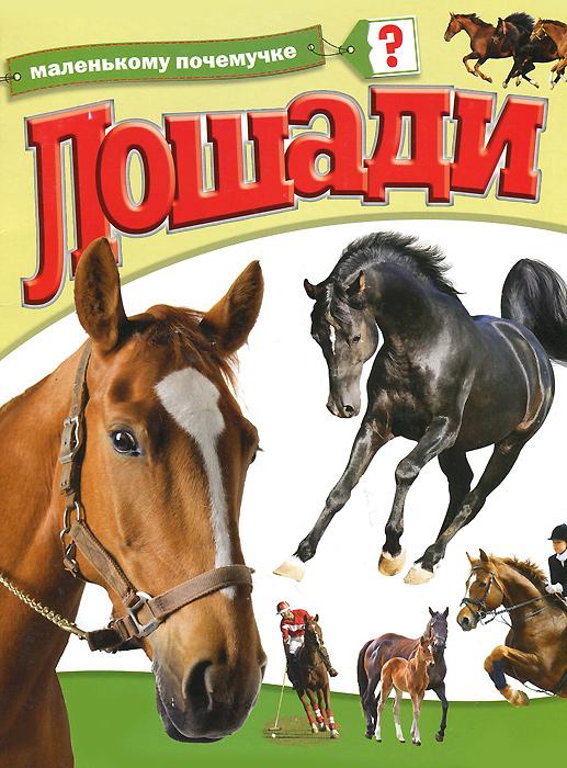 Лошади куплю телегу к лошади в гродно