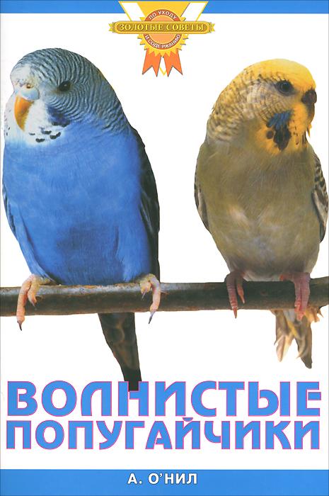 А. О'Нил. Волнистые попугайчики