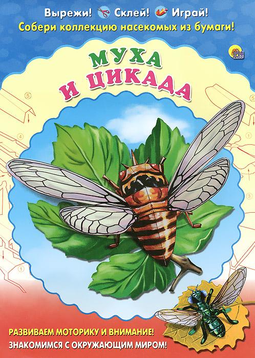 Муха и цикада. Набор для детского творчества