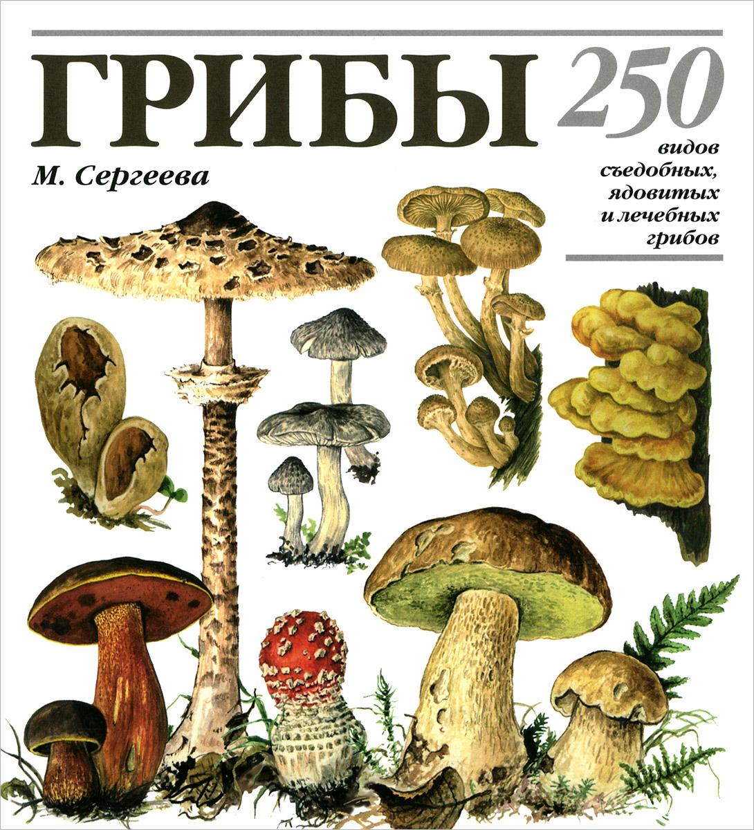 М. Н. Сергеева, Н. Г. Замятина, Л. В. Гарибова. Грибы. 250 видов съедобных, ядовитых и лечебных грибов