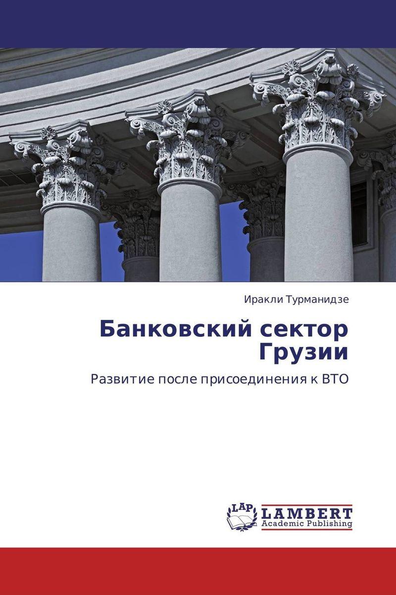 Иракли Турманидзе Банковский сектор Грузии