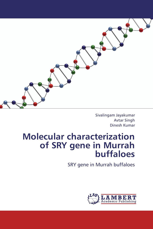 Sivalingam Jayakumar,Avtar Singh and Dinesh Kumar Molecular characterization of SRY gene in Murrah buffaloes santosh kumar singh biodiversity assessment in ocimum using molecular markers
