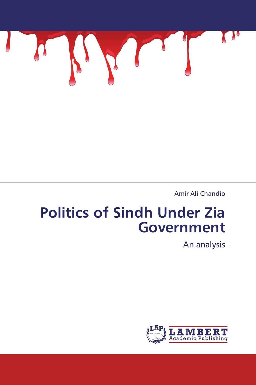 Amir Ali Chandio Politics of Sindh Under Zia Government sahar bazzaz forgotten saints – history power and politics in the making of modern morocco