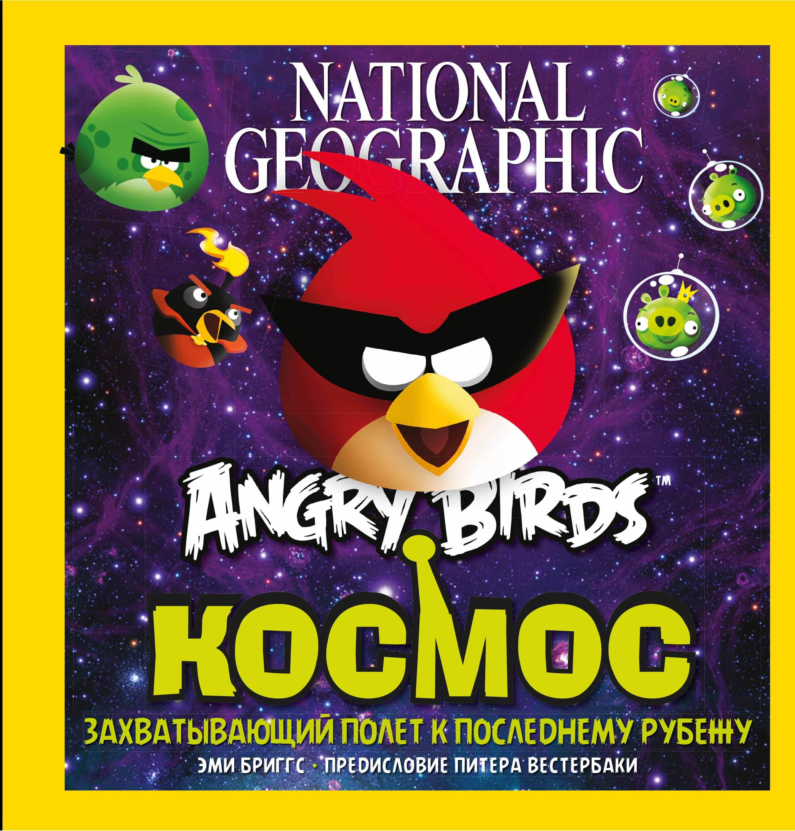Эми Бриггс. Angry Birds. Космос