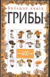 Н. Е. Макарова. Большая книга. Грибы