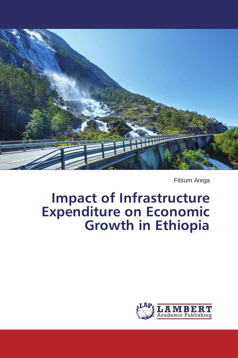 Fitsum Arega Impact of Infrastructure Expenditure on Economic Growth in Ethiopia ogonna anaekwe and uzochukwu amakom health expenditure health outcomes and economic development