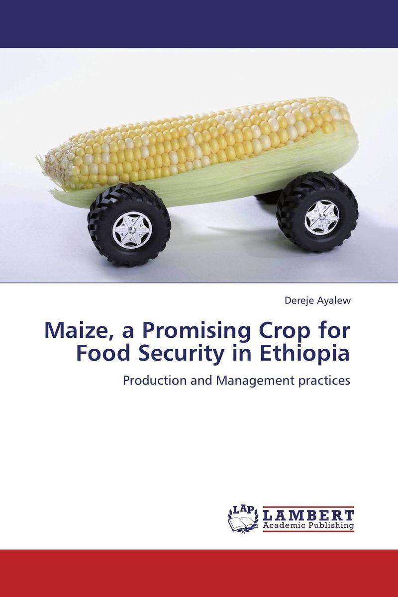 Dereje Ayalew Maize, a Promising Crop for Food Security in Ethiopia сумка для аксессуаров женская dakine accessory цвет черный 0 3 л