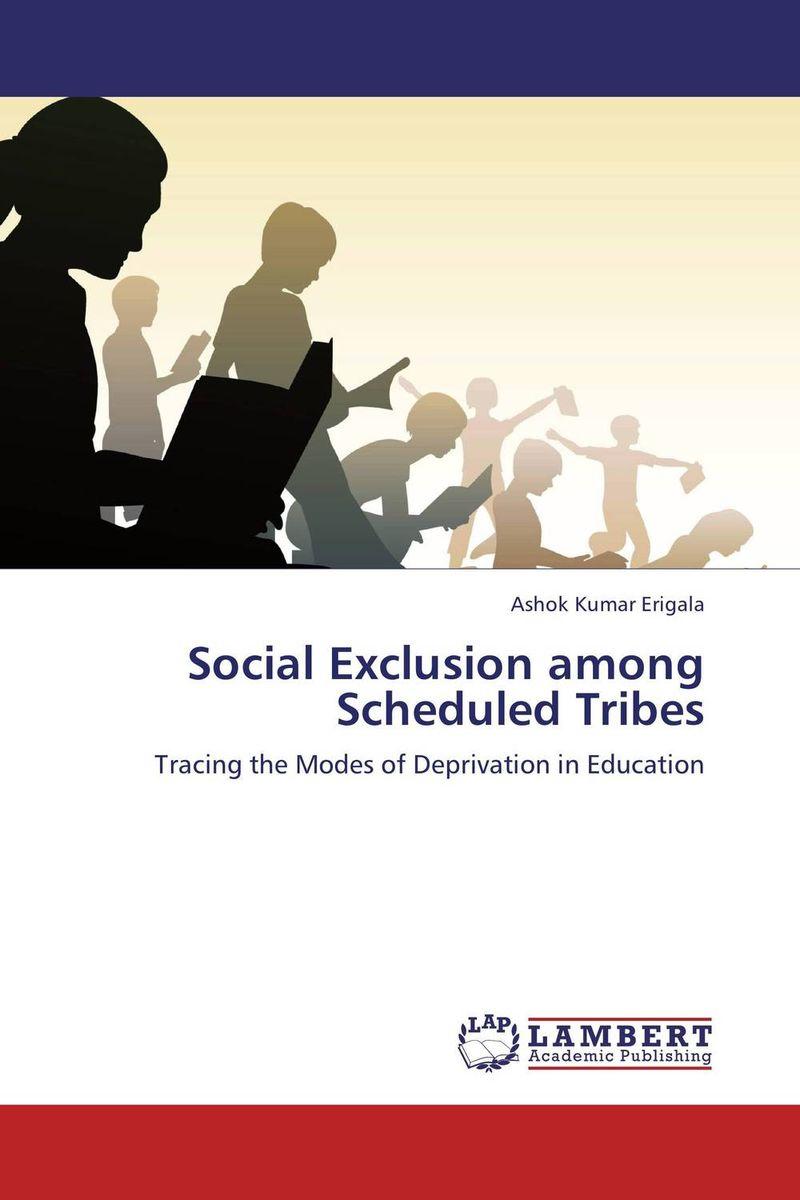Ashok Kumar Erigala Social Exclusion among Scheduled Tribes bir pal singh social inequality and exclusion of scheduled tribes in india