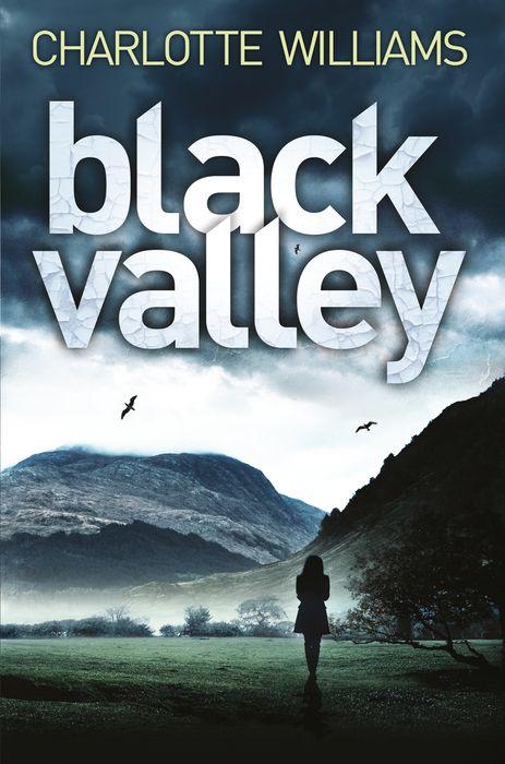 Williams, Charlotte. Black Valley