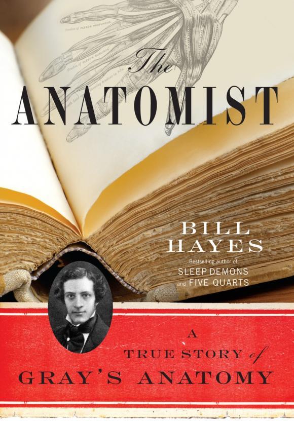 Bill Hayes. The Anatomist