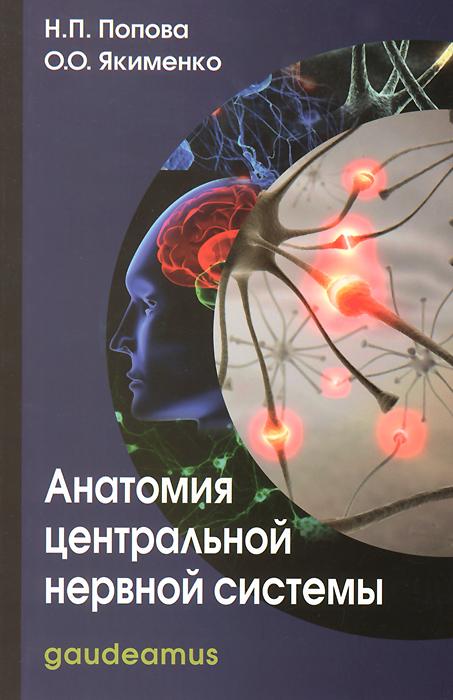 Анатомия центральной нервной системы