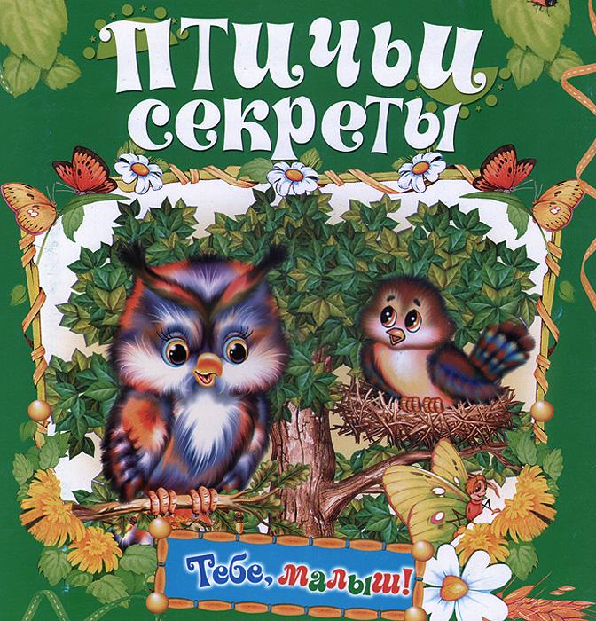 Птичьи секреты. Книжка-раскладушка росмэн книжка раскладушка колыбельные веселые гармошки