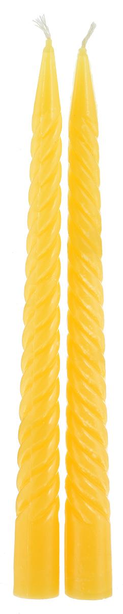 Набор декоративных свечей Lunten Ranta, цвет: желтый, высота 23 см, 2 штES-412Набор Lunten Ranta состоит из 2 декоративных витых свечей, изготовленных изпарафина. Такой набор украсит интерьер вашего дома или офиса и наполнит его атмосферу теплом и уютом. Диаметр основания свечи: 2 см.