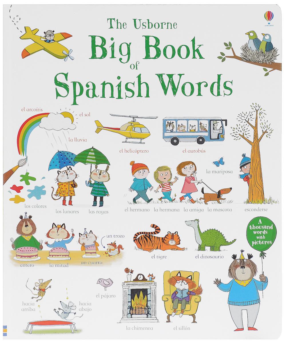 Mairi Mckinnon BIG BOOK OF SPANISH WORDS hide this spanish book