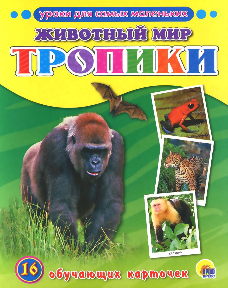 Животный мир. Тропики (набор из 16 обучающих карточек)
