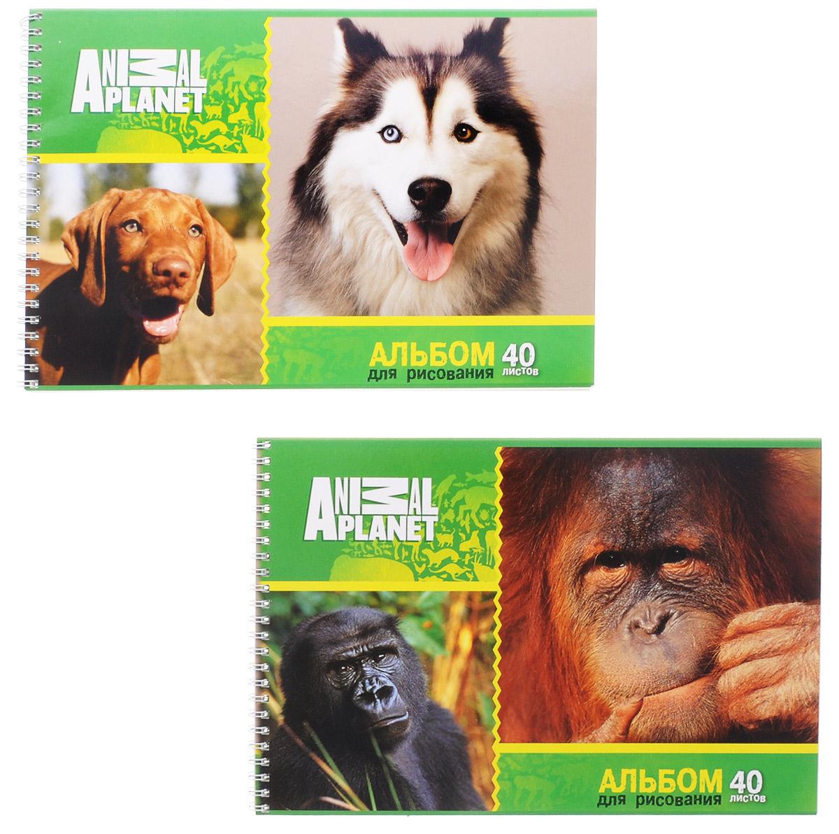 Action! Набор альбомов для рисования Собаки и обезьяны 40 листов 2 штП-9081Альбом для рисования Action! Собаки и обезьяны порадует маленького художника и вдохновит его на творчество. Альбом изготовлен из белоснежной бумаги с яркой обложкой из плотного картона. Внутренний блок альбома на гребне. Один альбом содержит 40 листов. В набор входят два альбома.