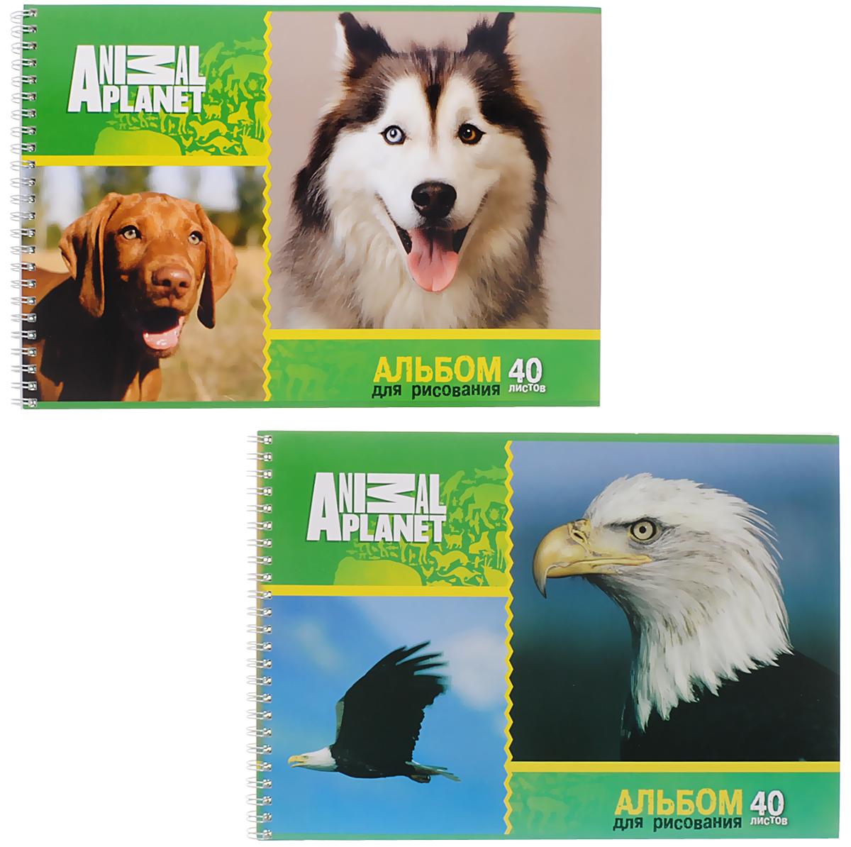 Action! Набор альбомов для рисования Орел и собаки 40 листов 2 шт72523WDАльбом для рисования Action! Орел и собаки обязательно порадует маленькогохудожника и вдохновит его на творчество. Альбом изготовлен из белоснежнойбумаги с яркой обложкой из плотного картона. Внутренний блок альбома нагребне. Один альбом содержит 40 листов. В набор входят два альбома.