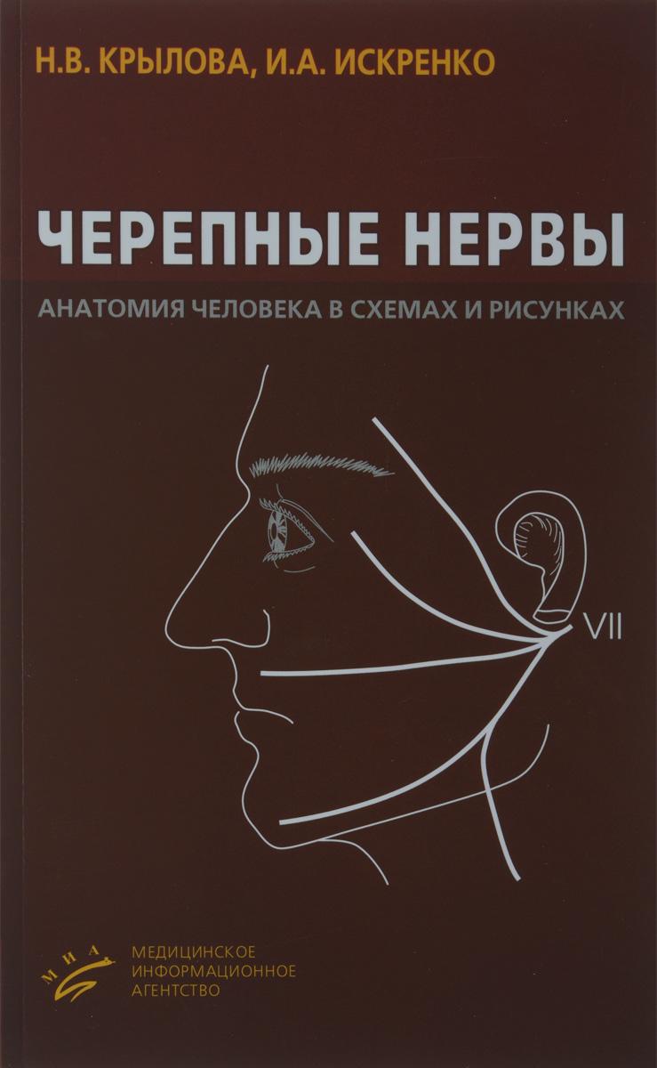 Черепные нервы. Анатомия человека в схемах и рисунках. Атлас-пособие
