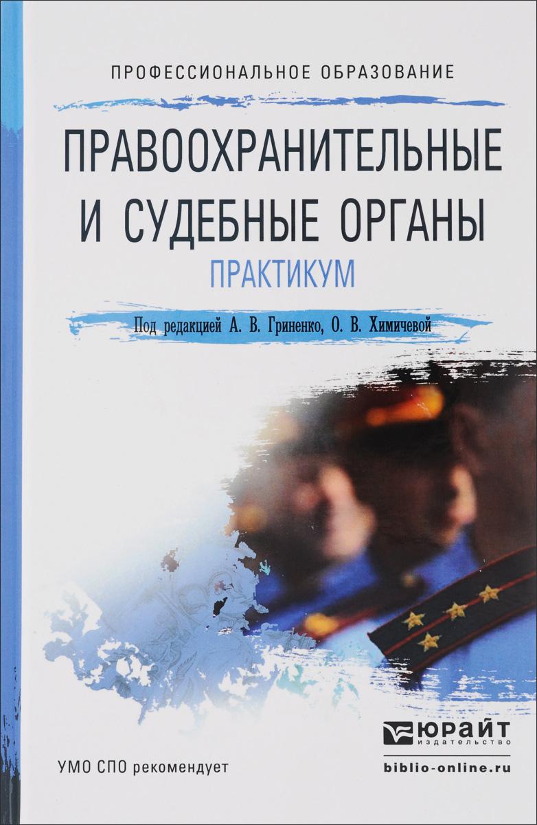 Правоохранительные и судебные органы. Практикум. Учебное пособие