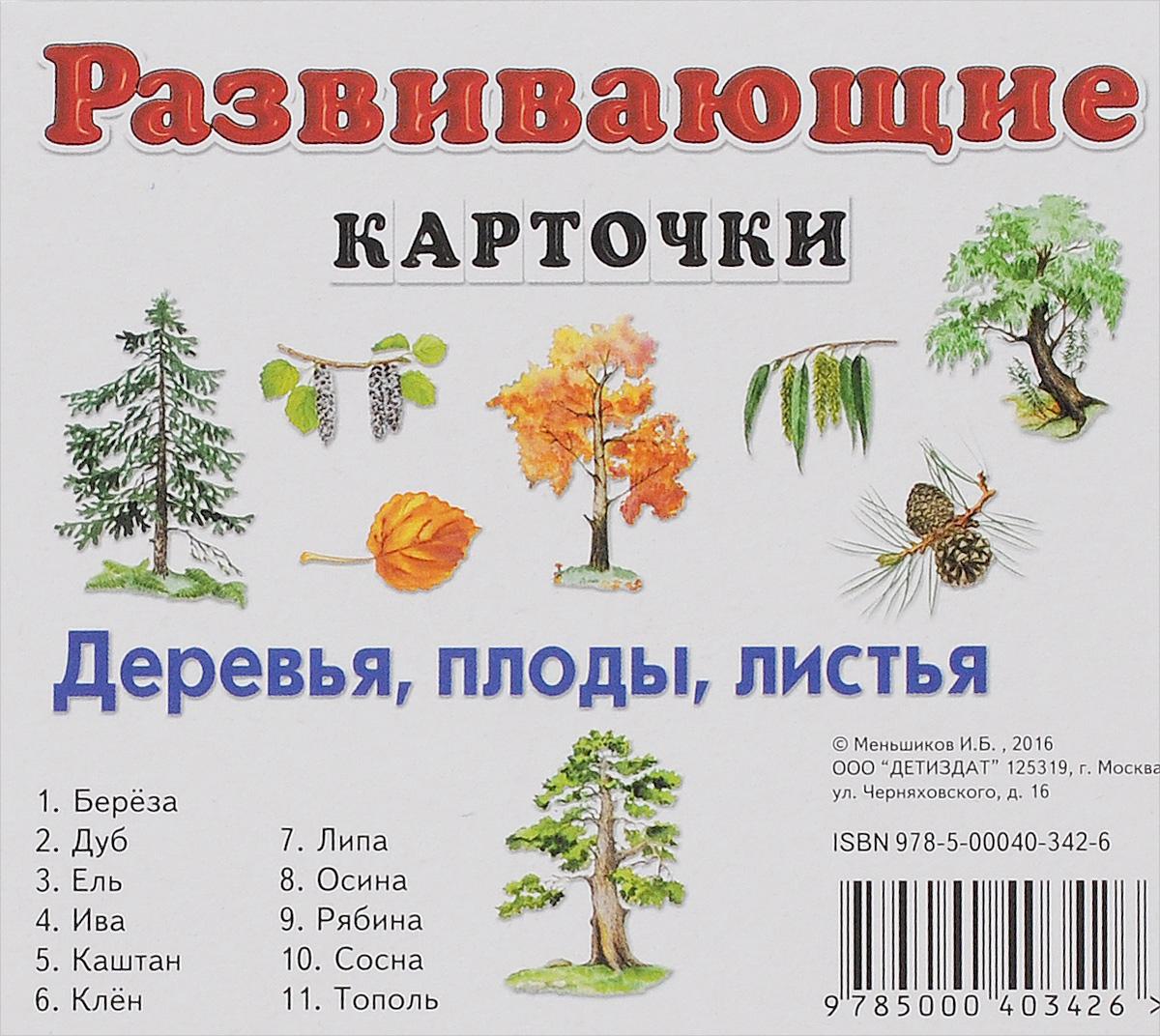 Деревья, плоды, листья. Развивающие карточки (набор из 11 карточек)