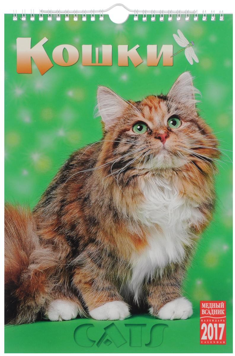 Календарь 2017 (на спирали). Кошки / Cats календарь настольный 2017 на спирали москва moscow
