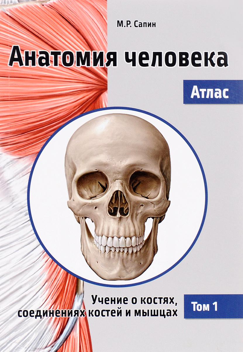 Анатомия человека. Атлас. В 3 томах. Том 1. Учение о костях, соединениях костей и мышцах. Учебное пособие