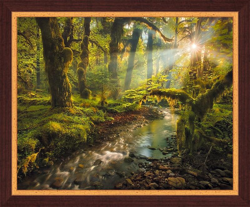 Картина Postermarket Сказочный лес, 40 х 50 смU210DFКартина Postermarket Сказочный лес прекрасно подойдет для декора интерьера различных помещений.Постер, выполненный в технике фотопечать, оформлен багетом темно-коричневого цвета.Картина для интерьера (постер) - это современное и актуальное направление в дизайне помещений. Ее можно использовать для оформления любых помещений (дом, квартира, офис, бар, кафе, ресторан или гостиница).работоспособность.Правильное оформление интерьера создает благоприятный психологический климат, улучшает настроение и мотивирует. Размер картины: 400 x 500 мм.
