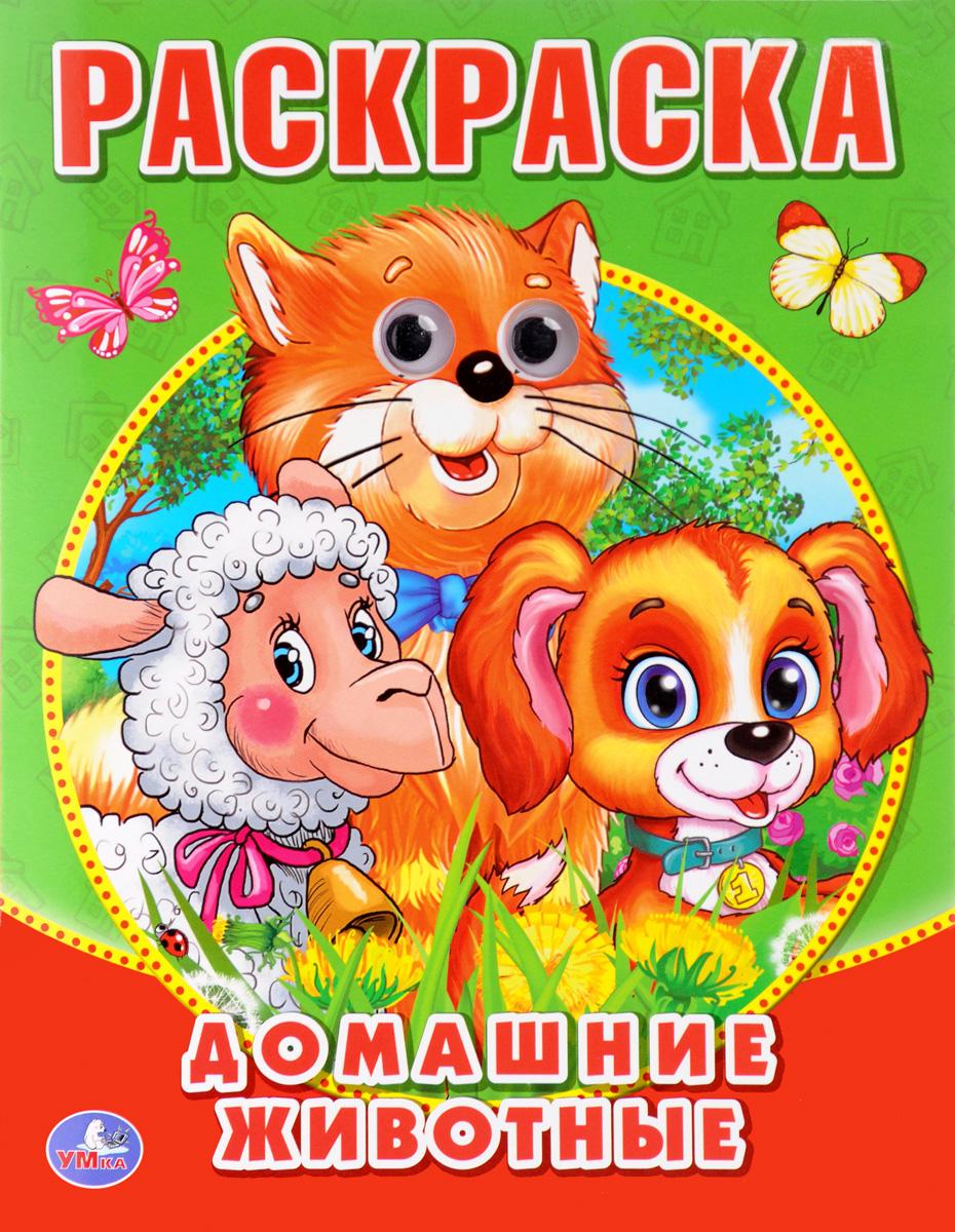 Домашние животные. Раскраска с глазками