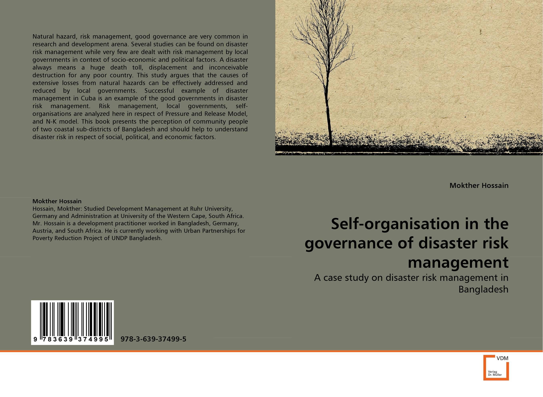 Self-organisation in the governance of disaster risk management