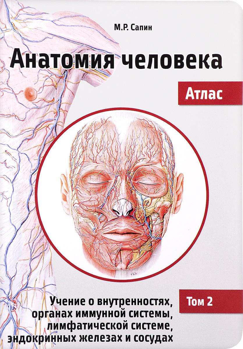 Анатомия человека. Атлас. Учебное пособие. В 3 томах. Том 2. Учение о внутренностях, органах иммунной системы, лимфатической системе, эндокринных железах и сосудах