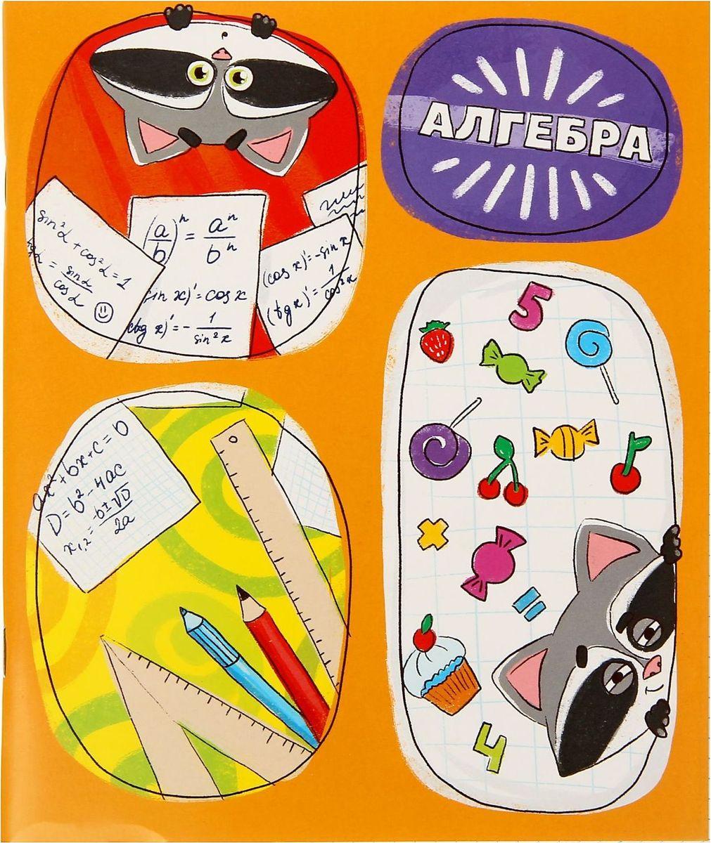 Тетрадь Алгебра 48 листов в клетку72523WDПорой процесс обучения — трудный и скучный. Чтобы пробудить у детей интерес к науке, мы создали замечательные яркие предметные тетради. Забавные картинки и справочный материал подарят отличное настроение. Учитесь с удовольствием и делайте свои удивительные открытия!