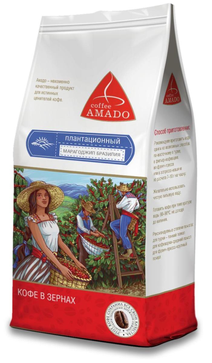 Amado Марагоджип Бразилия кофе в зернах, 500 г0120710Марагоджип Бразилия - кофе, выращенный на высокогорье штата Минас-Жерайс, имеет богатую палитру вкуса и аромата. Ягоды этого сорта при созревании имеют яркий желтый цвет, оттуда и название Yellow Maragogype. Вы почувствуете яркий фруктовый вкус в чашке, с приятной сладостью, мягкой кислинкой и нежным цветочным послевкусием. Рекомендуемый способ приготовления: по-восточному, френч-пресс, гейзерная кофеварка, фильтр-кофеварка, кемекс, аэропресс.