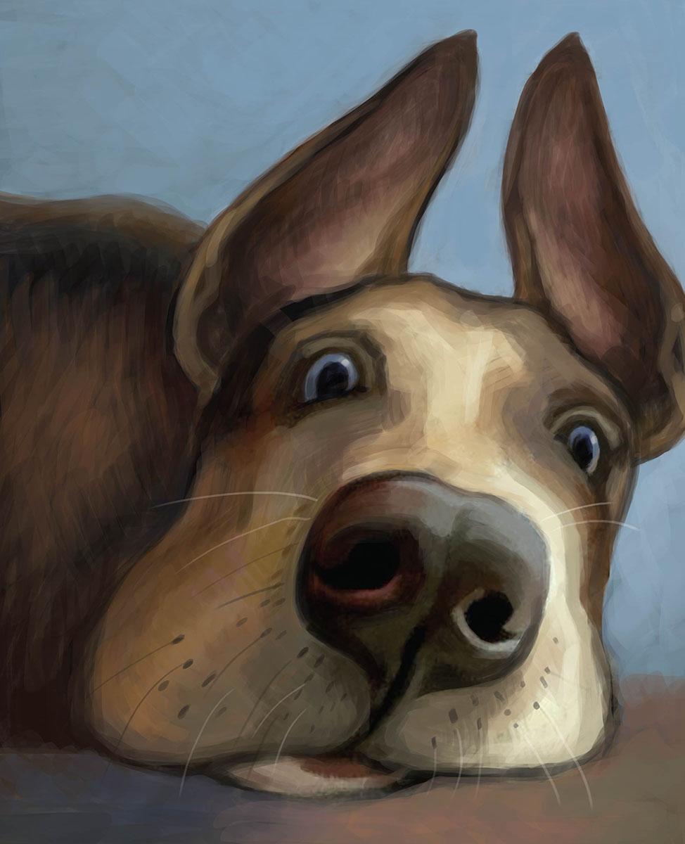 Marker Тетрадь общая Зверье мое Собака 48 листовSMA510-V8-ETТетрадь с дизайнерской обложкой и цветным внутренним блоком