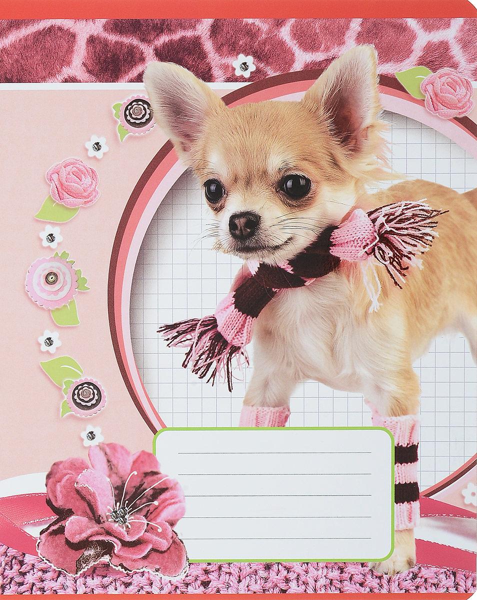 Magic Lines Тетрадь Собака в шарфе 12 листов в линейку44166Тетрадь Magic Lines Собака в шарфе с красочным дизайном предназначена для младших школьников.Обложка тетради выполнена из картона с закругленными углами. На обратной стороне обложки имеется русский и английский алфавит.Внутренний блок тетради состоит из 12 листов белой бумаги на металлических скрепках, разлинованных в линейку с красными полями.