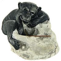Фигурка декоративная Обезьянка22638Забавная декоративная фигурка, выполненная в виде симпатичной обезьянки, станет оригинальным украшением интерьера и вызовет улыбку у каждого, кто ее увидит. Оригинальный сувенир отлично подойдет в качестве подарка близким или друзьям. Характеристики: Материал: полистоун. Размер: 8,5 см х 6,5 см х 7,5 см. Артикул: 22638.