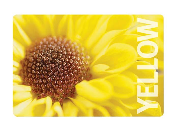 Салфетка под горячее Цветок, цвет: желтый, 44 см х 30 смVT-1520(SR)Прямоугольная подставка под посуду Цветок предназначена для сервировки стола. Подставка выполнена из полипропилена с оригинальным цветочным рисунком. Характеристики:Материал: полипропилен. Размер: 44 см х 30 см. Изготовитель: Италия. Артикул: 2813.