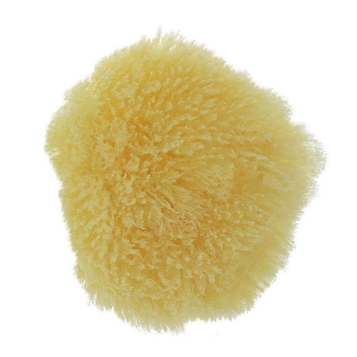 Губка для тела Riffi, натуральная, карибская. 3362М24Губка Riffi предназначена для деликатного ухода за телом, отлично действует как пилинговое средство, тонизируя, массируя и эффективно очищая вашу кожу. Клетки натуральной морской губки аналогичны по своему строению клеткам щелка, поэтому при мытье губка вызывает ощущение поистине шелковистой нежности.Губки Riffi добывают на самых чистых участках Средиземного и Карибского морей и, кроме того, подвергаются на фабрике антибактериальной обработке, поэтому они рекомендуются аллергикам и людям с особо чувствительной кожей. Характеристики:Материал: губка натуральная. Размер губки: 11 см x 10,5 см x 4 см. Размер упаковки: 12 см x 11 см x 6,5 см. Производитель: Германия. Артикул:3362. Товар сертифицирован.