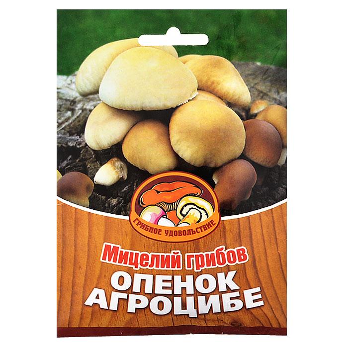 """Грибное удовольствие Мицелий грибов """"Опенок Агроцибе"""", на 16 древесных палочках 10038"""