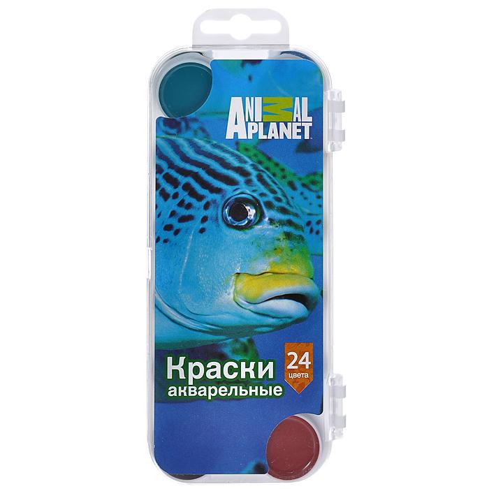 Акварель медовая Action! Animal Planet, 24 цветаAP-WP24/2Медовые акварельные краски Action! Animal Planet идеально подойдут для детского художественного творчества, изобразительных и оформительских работ. Краски легко размываются, создавая прозрачный цветной слой, легко смешиваются между собой, не крошатся и не смазываются, быстро сохнут. В набор входят краски 24 ярких насыщенных цвета, упакованных в коробку с европодвесом. В процессе рисования у детей развивается наглядно-образное мышление, воображение, мелкая моторика рук, творческие и художественные способности, вырабатывается усидчивость и аккуратность. Характеристики: Размер упаковки: 8 см x 1,5 см x 18,5 см. Изготовитель: Украина. Уважаемые клиенты! Обращаем ваше внимание на то, что упаковка может иметь несколько видов дизайна. Поставка осуществляется в зависимости от наличия на складе.