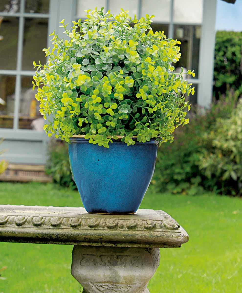 Искусственное растение Gardman Topiary Ball, цвет: зеленый, диаметр 30 см. 02811KOC_SOL249_G4Искусственное растение Gardman Topiary Ball выполнено из пластика в виде шара. Композиция представляет собой мелкие листья салататово-зеленого цвета. К растению прикреплены три цепочки с крючком, за который его можно повесить в любое место. Также растение можно поместить в горшок. Растение устойчиво к воздействиям внешней среды, таким как влажность, солнце, перепады температуры, не выцветает со временем. Искусственное растение Gardman Topiary Ball великолепно украсит интерьер офиса, дома или сада. Характеристики:Материал: пластик, металл. Цвет: зеленый. Диаметр шара: 30 см. Длина цепочек с крючком: 30 см.